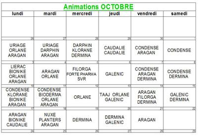 Animations du mois d'octobre
