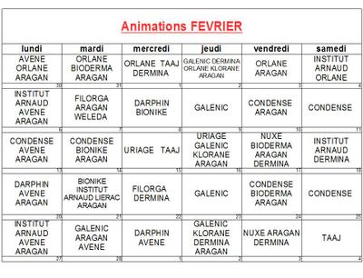 Animations de février 2017