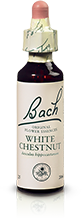 WHITE CHESTNUT FL BACH ORIGINAL 20ML