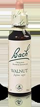 WALNUT FL BACH ORIGINAL 20ML
