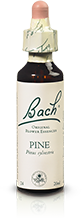 PINE FL BACH ORIGINAL 20ML