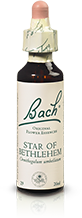 STAR OF BETHLEHEM FL BACH ORIGINAL 20ML