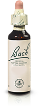 BEECH FL BACH ORIGINAL 20ML