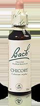 CHICORY FL BACH ORIGINAL 20ML