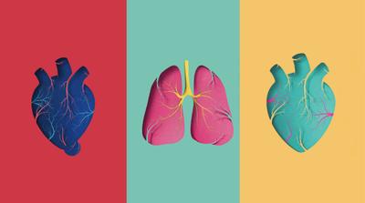 Don d'organes : dire non devient plus facile
